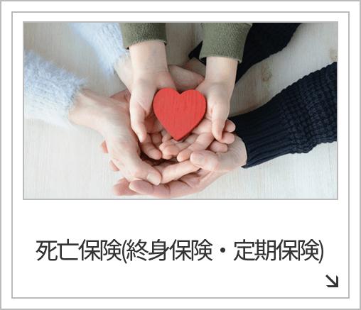 死亡保険(終身保険・定期保険)